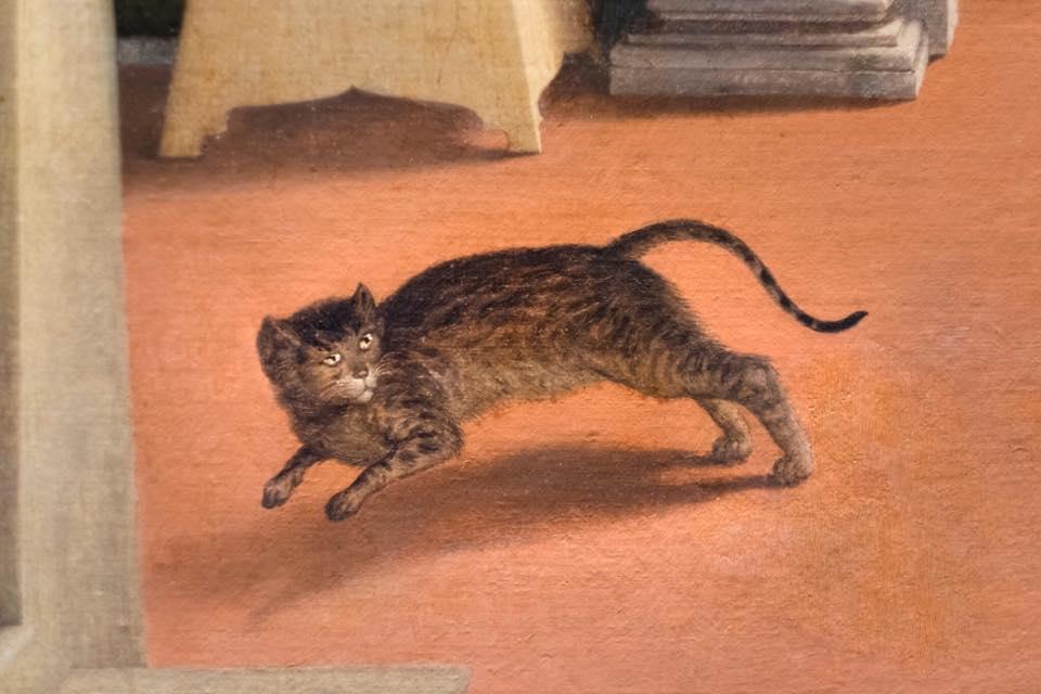 Festa del gatto? A Recanati festeggiamo quello dell'Annunciazione