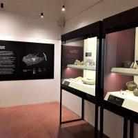 Visita + laboratorio - Archeologizzati!